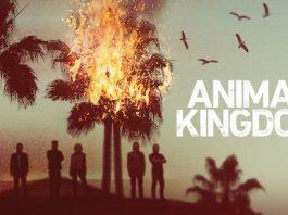 animal-kingdom-poster-5